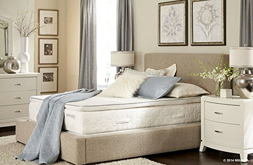 Mlily Serenity Gel Infused Memory Foam Twin XL Mattress