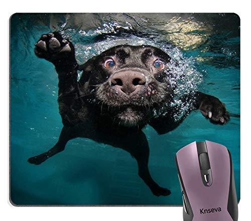 Knseva Cute Black Labrador Retriever Dog Swimming with Expressive Face Mouse Pad Funny Puppy Mouse - Black Mouse Labrador Retriever Pad