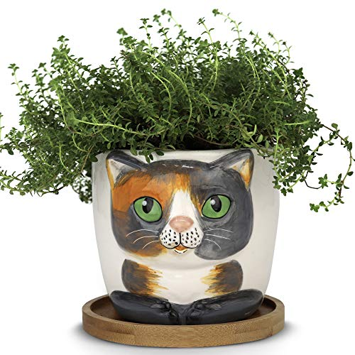 Window Garden – New Large Kitty Pot (Barney) – Purrfect for Indoor Live House Plants, Like Succulents, Flowers and Herbs. Top Quality, Super Cute Planter Gift for Cat Lovers, Office, Christmas.