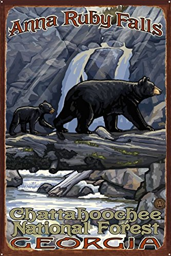 Anna Ruby Falls Geogia Bear On Log Hills Rustic Metal Art Print by Paul A. Lanquist (24