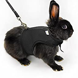 Niteangel Adjustable and Breathable Mesh Harness with Lead for Rabbit (Black)