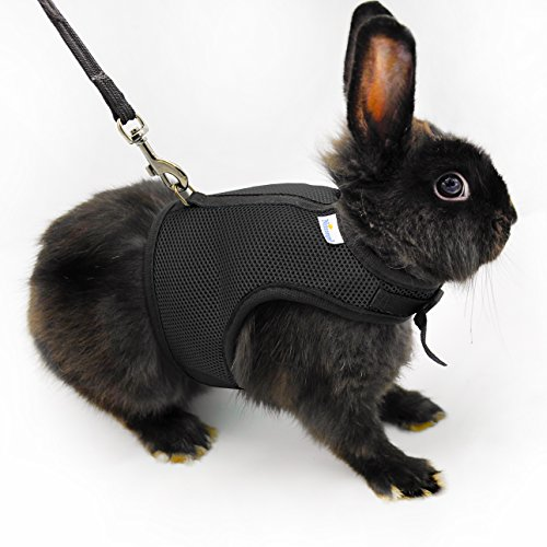niteangel-adjustable-and-breathable-mesh-harness-with-lead-for-rabbit-black
