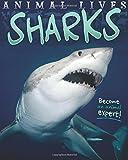Animal Lives: Sharks