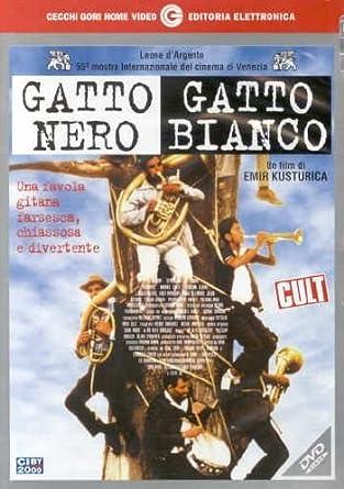 Gatto Nero Gatto Bianco: Amazon.it: Florijan Adjini, Severdzan Bajram,  Jasar Destani, Branka Katic, Emir Kusturica, Florijan Adjini, Severdzan  Bajram: Film e TV
