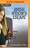 Amish Widow's Escape (Expectant Amish Widows)