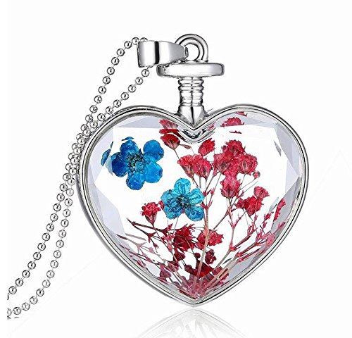 Car Heart Charm - JIAMIN Heart-Shaped Built-in Plant specimens Lavender car Charm of The Rear-View Mirror in The Beautiful Double-Sided Transparent Color (Red)