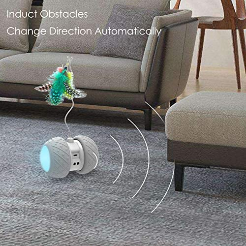 MalsiPree Robotic Interactive Cat Toy, Automatic Feather/Ball Teaser Toys for Kitten/Cats, USB Rechargeable Electronic Kitty Toy, Large Capacity Battery, All Floors/Carpet Available, 4 Bonus Feathers 7