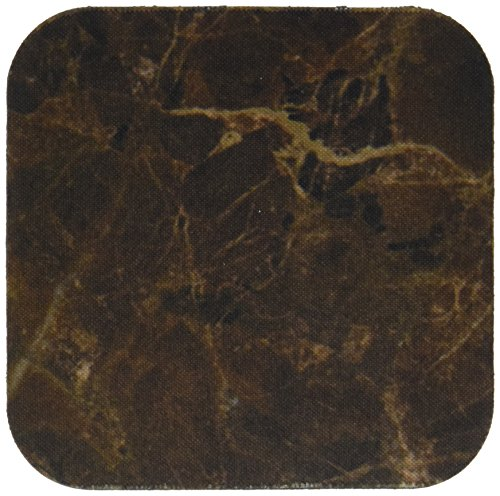 3dRose cst 101039 1 Picture Veined Coasters