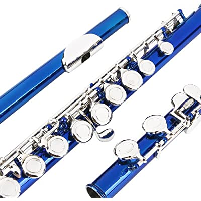 glory-closed-hole-c-flute-with-case