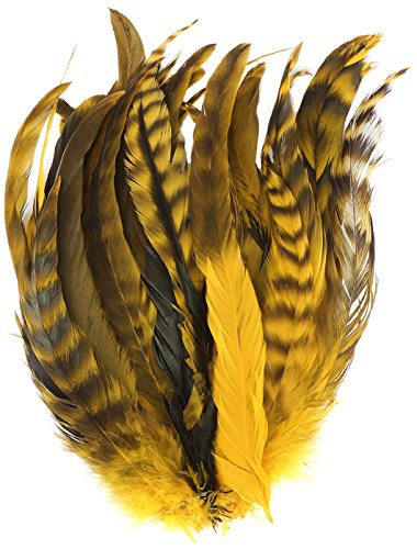(Zucker Feather (TM) - Rooster Coque Tails-Chinchilla Gold)