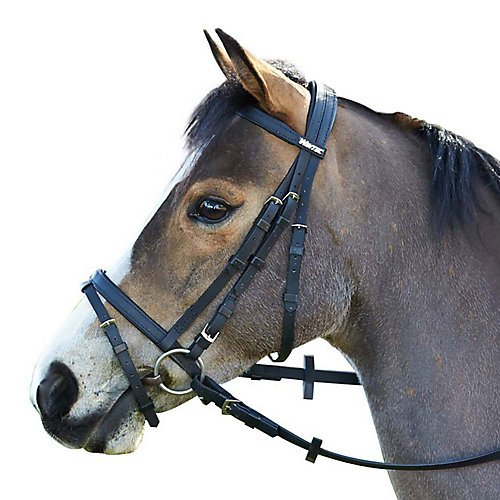 Wintec Bridle with Flash Cob Black