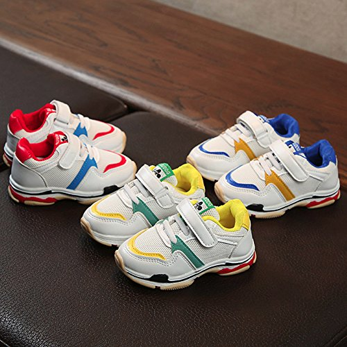 ❤ Zapatillas de Malla,Toddler Kids Sport Zapatillas de bebé para Correr Zapatillas de Deporte con Suela Blanda y Malla de Boys Girls Absolute: Amazon.es: ...