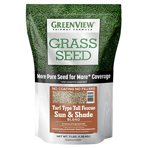 GreenView 2829346 Fairway Formula Grass Seed Turf Type Tall Fescue Sun & Shade Blend, 3 lb. (Best Turf For Shade)