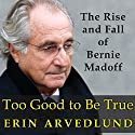 Too Good to Be True: The Rise and Fall of Bernie Madoff Audiobook by Erin Arvedlund Narrated by Karen White