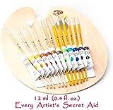 Daveliou Paint Brushes & Palette Set - 12 - Best Reviews Guide