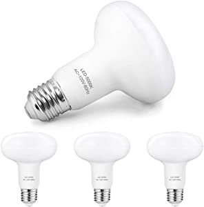 BR30 Led Bulbs Daylight, 1200 Lumens, 12W(100 Watt Equivalent), 5000K Daylight White, Dimmable, E26 Medium Base, R30 LED Flood Light Bulbs for Indoor/Outdoor Downlight Recessed Can Light, 4 Pack