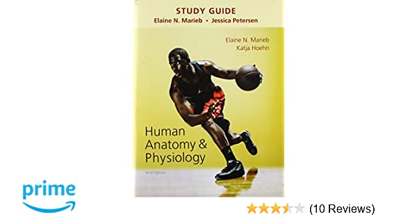 Study Guide for Human Anatomy & Physiology: 9780133999310: Medicine ...