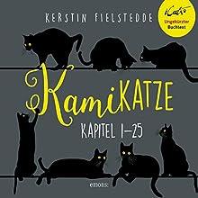 Kamikatze 1: Ein Katz und Maus Krimi Hörbuch von Kerstin Fielstedde Gesprochen von: Simon Veredon