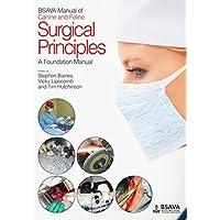 BSAVA Manual of Surgical Principles (BSAVA British Small Animal Veterinary Association)