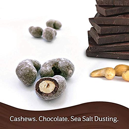 Dove Milk Chocolate Sea Salt Dusted Cashews 1.6 oz-Pack of 60