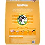 Iams-Proactive-Health-Smart-Puppy-Large-Breed-Dry-Dog-Food-Chicken-306-Lb-Bag