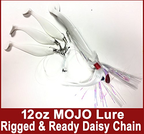 Blue Water Candy - Rock Fish Candy 350ml Spire (White) Mojo Striper Daisy Chain Lure, Loaded with 23cm Swimbait Shad Body & 7.6cm x 15cm Trailing Shads - Rigged & Ready (White)   B073ZKJNLT