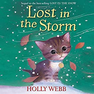 Lost in the Storm Audiobook