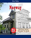 Cities Grayscale Coloring Book for Adult Landmarks in Norway  Grayscale Coloring Book: Cities Grayscale Coloring Book for Adult Landmarks in Norway ... 1 (Cities Coloring Book For Adult Landmarks)