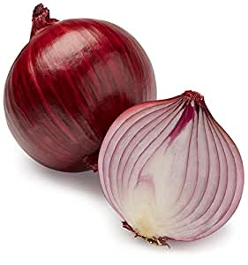 Image result for images of onions
