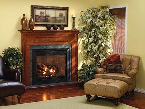 UPC 767383395849, Tahoe Luxury 42 DV MV Fireplace, Barrier Screen & Black Ref. Liner, LP