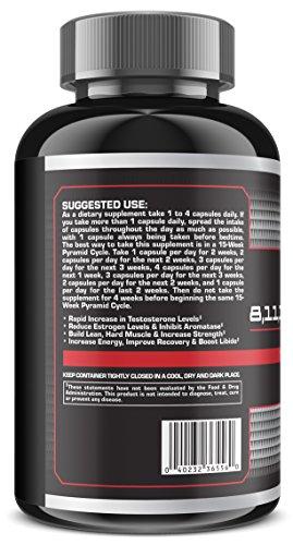 Amazon Com 8 11 13 Abietatriene Testosterone Booster Supplement