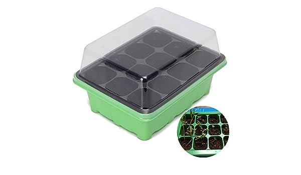 ... Plant Seeds Grow Box Seeds Sprout Tray Garden Tools // 12 hoyos semillas de plantas crecen semillas brotan caja de herramientas de jardín bandeja -