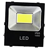 ZXYWW 50 Watts Outdoor LED Flood Light, White Light, IP65 Waterproof, Floodlight Landscape Wall Lights Suitable For Garden Yard, Party, Playground(Black),100W