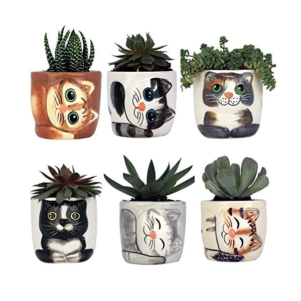 Window-Garden-New-Small-Kitty-Pot-Collection-of-6–Purrfect-for-Mini-Succulents-African-Violets-or-Small-Fairy-Garden-Plants-Top-Quality-Super-Cute-Planter-Gift-for-Cat-Lovers-Christmas