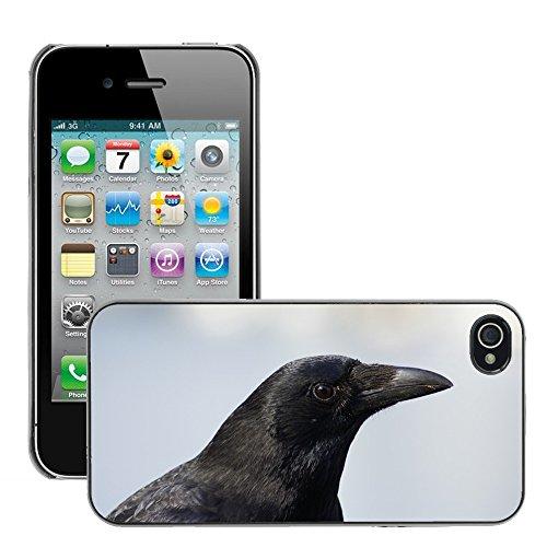 Bild Hart Handy Schwarz Schutz Case Cover Schale Etui // M00134757 Raben Vogel Schwarz // Apple iPhone 4 4S 4G