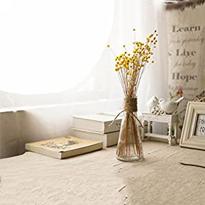100 Stems Natural Dry Flowers Brazilian Small Star Daisy Decorative Dried Flowers Mini Daisy Chamomile Bouquet for Wedding Floral Arrangements Home Decorations (Autumn Color) 5