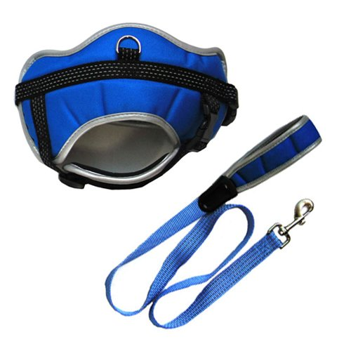 Iconic Pet Reflective Adjustable Harness with Leash, XX-Small, bluee