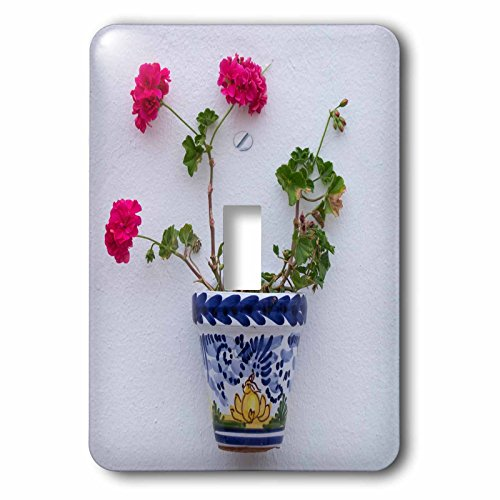 3dRose Danita Delimont - Flowers - Spain, Andalusia. Arcos de la Frontera. Painted ceramic flower pot. - Light Switch Covers - single toggle switch (lsp_277888_1) by 3dRose