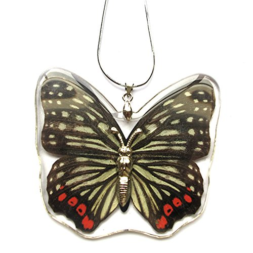 - Real Butterfly Necklace And Earring Set For Girls (Red Ring Skirt Butterfly)