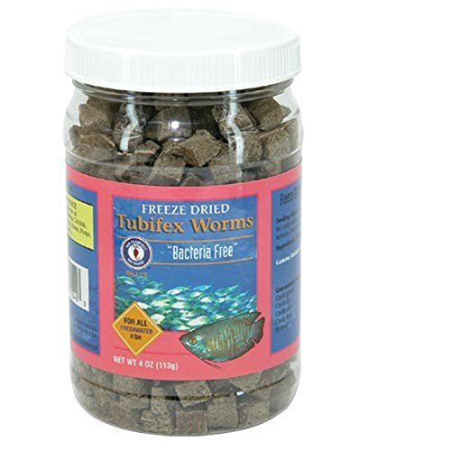 Freeze Dried Bacteria Free Tubifex - 4 oz.