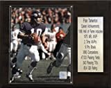 NFL Fran Tarkenton Minnesota Vikings Career Stat Plaque