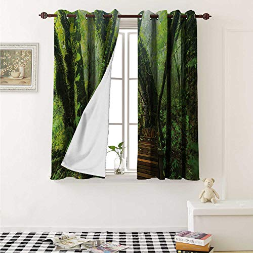 Forest Customized Curtains Entrance to Deep Dark Evergreen Jungle Magical Surreal Extreme Vivid Plants Jungle Curtains for Kitchen Windows W63 x L45 Inch Green Brown