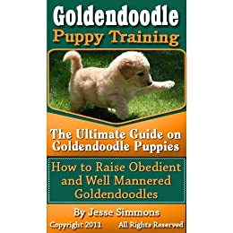 Goldendoodle Puppy Training The Ultimate Guide On Goldendoodle Puppies How To Raise Obedient And Well Mannered Goldendoodles
