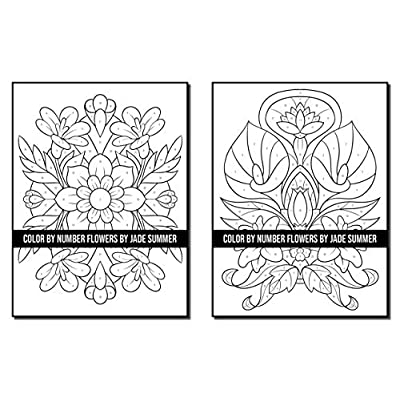 Buy Color By Number Flowers: An Adult Coloring Book With Fun, Easy, And  Relaxing Coloring Pages (Color By Number Coloring Books For Adults)  Paperback – Large Print, November 24, 2020 Online In Indonesia. B08P1FC8XG