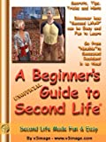 A Beginner's Guide to Second Life, v3image, 1595071903