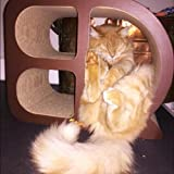 Cat Toy Cube Scratcher Condo Playhouse Scratching Helps Protect Furniture & EBOOK