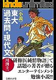 〈小説〉東大過去問・現代文 (文庫ぎんが堂)