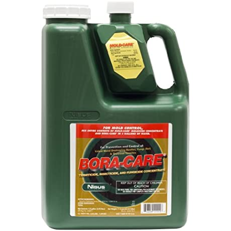 Bora Care With Mold Care 2 Gallons 608794