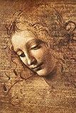 Leonardo Da Vinci (Female Head, La Scapigliata) Art Print 24 x 36in