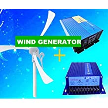 GOWE Max power 500w 12v /24v 400w wind power +400w hydro controller+500w pure sine wave inverter =home electrictiy